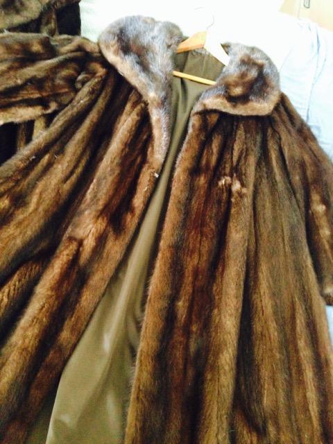 Mink Coat 2