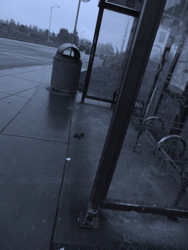 empty bus stop Photo by Rhea