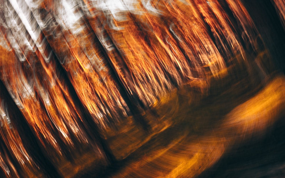 Abstract photo of swirling orange lights and dark-colored bars that look like tree trunks